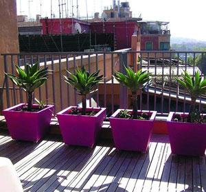 Les pots serralunga mettent de la couleur dans votre for Plante fushia exterieur