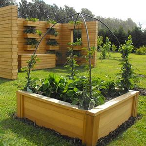 Potager urbain plantez et cultivez en ville comme la for Carre potager design