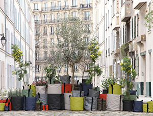 Potager Urbain: Plantez et Cultivez en Ville comme  la Campagne !